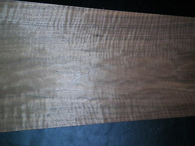 Curly Walnut raw wood veneer, 10.75 x 33 inches. 1/42nd thick         r1146-43