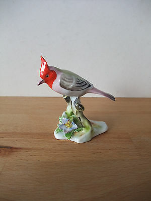 Royal Adderley 'Floral' Bone China Cardinal Bird Ornament - Lovely Colours