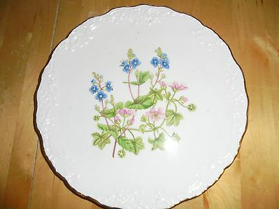 Spode collectors flower plate wild flowers