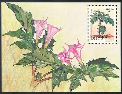 Lesotho 1995 Medicinal Plants/Flowers/Nature m/s n16984
