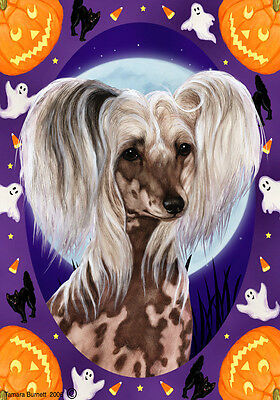 Garden Indoor/Outdoor Halloween Flag - Chinese Crested 120691
