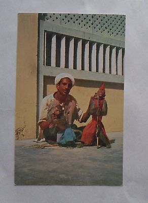 Vintage 1960s Colour Postcard. Performing Street Monkey. Karachi, Pakistan