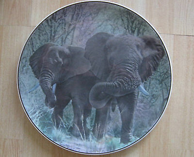 "Vintage Royal Doulton ""African Series,African Elephants"" Decorative Plate D6481"