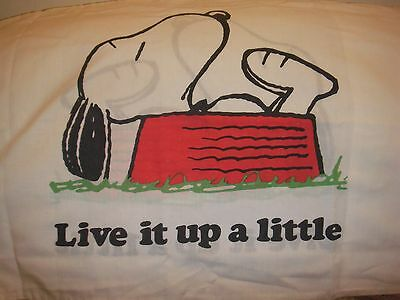 Vintage Peanuts Snoopy Pillow case Laundered