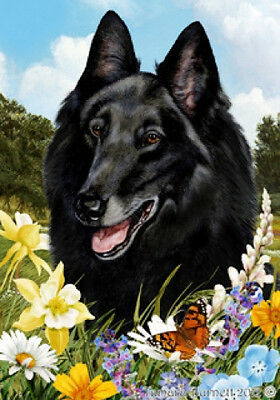 Large Indoor/Outdoor Summer Flag - Belgian Sheepdog 18204