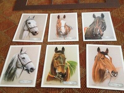6 Horses Racing Card And Card Mount