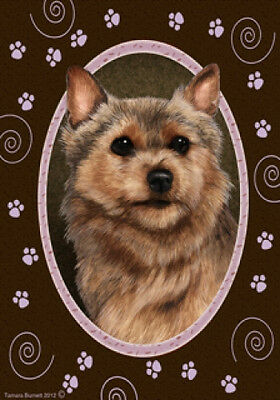 Large Indoor/Outdoor Paws Flag - Norwich Terrier 17152