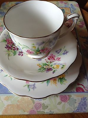 Vintage Queen Anne Old Country Spray Trio ( Cup Saucer Tea Plate )