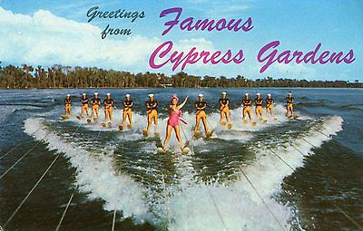 Greetings From Famous Cypress Gardens Florida Postcard, Posted 1965
