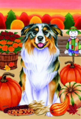 Garden Indoor/Outdoor Autumn Flag - Australian Shepherd (TP) 670741