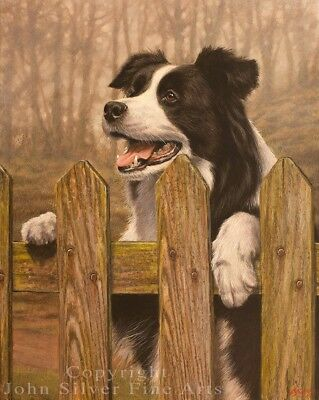 BORDER COLLIE ORIGINAL OIL PAINTING by Award Winning Master Artist JOHN SILVER