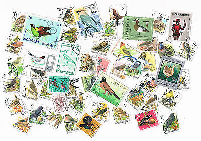 Lot of 50 different stamps (birds)