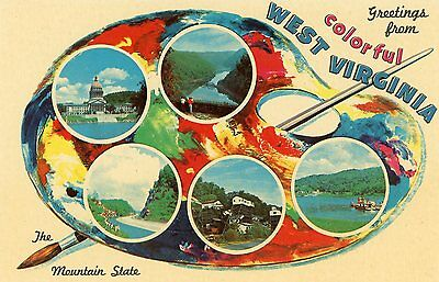 """Greetings From Colorful West Virginia"""" The Mountain State"""" Postcard 1963"""