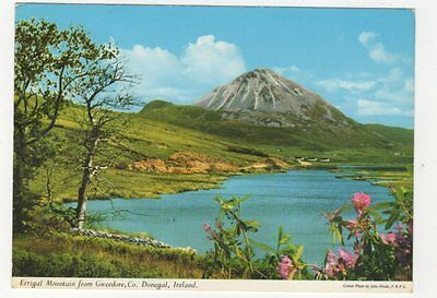 Errigal Mountain From Gweedore Co Donegal Ireland Postcard 881a