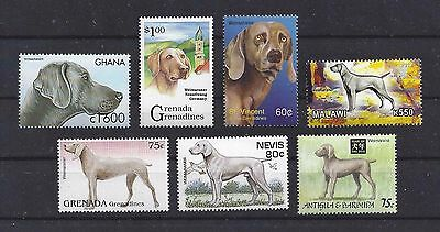 Dog Art Head & Body Study Portrait Postage Stamp Collection WEIMARANER 7 x MNH