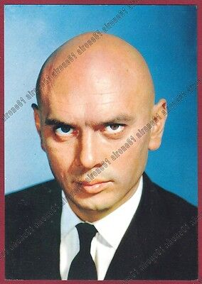 YUL BRYNNER 01b ATTORE ACTOR ACTEUR CINEMA MOVIE - USA Cartolina NON FOTOGRAFICA