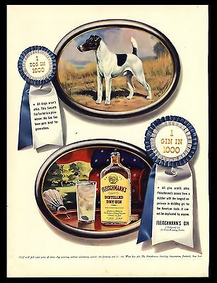"Original 1940 ""fleischmann's Gin"" Fox Terrier Blue Ribbon Art Print Ad"
