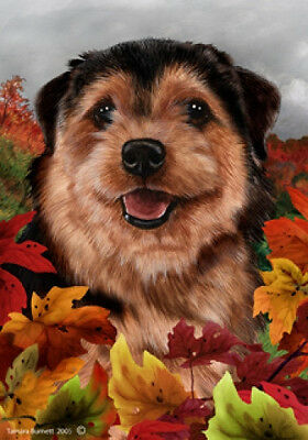 Garden Indoor/Outdoor Fall Flag - Norfolk Terrier 132251
