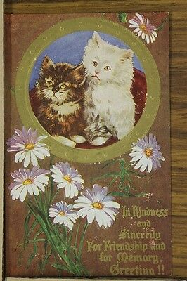 ANTIQUE 1910's POSTCARD Cats Kittens Kindness Friendship Greetings Unposted