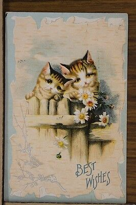 ANTIQUE 1910's POSTCARD Cats Kittens Best Wishes on a Fence Flowers Posted