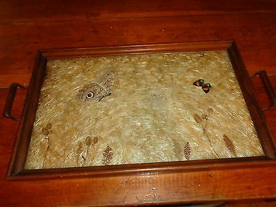 "Large 23-1/2"" wood & brass? vintage serving tray butterflies & dried flowers"
