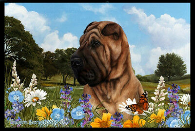 Indoor/Outdoor Summer Floor Mat - Shar Pei (TB) 39053