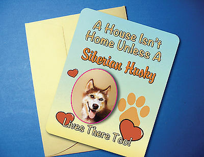 """A House Isn't Home"" Siberian Husky Greeting Card / Blank Note Card - sku# AH-19"
