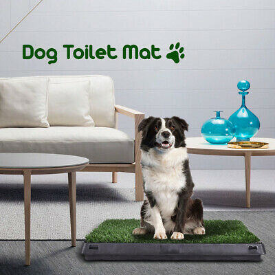 Pet Dog Toilet Mat Indoor Portable Training Grass Potty Pad Loo Tray Large New