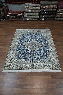 Stunning S Antique Traditional Blue Nain Persian Oriental Area Rug Carpet 6X9