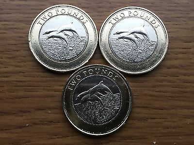 2014 Gibraltar £2 Dolphins Two Pound Coin Coin Circulated but in Good Condition