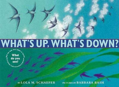 What's Up, What's Down? by Lola M. Schaefer Hardcover Book (English)