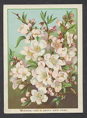 C1520 Victorian New Year Card: Blossom
