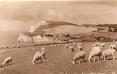 Freshwater Bay From Afton Downs Isle Of Wight Postcard Pub Merwood