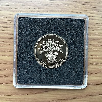 1989 £1 PROOF Coin - Royal Mint One Pound - Free Case