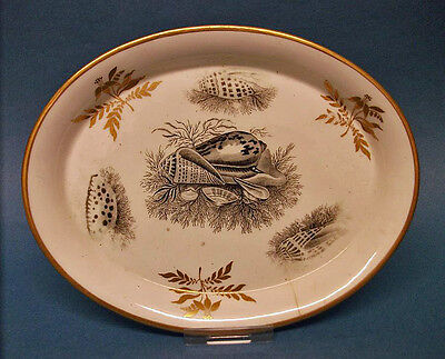 A Minton Teapot Stand, pattern number, 619, c.1808