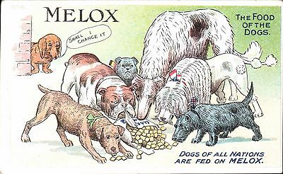 Advertising. Melox Dog Food #4. Dogs of All Nations. Bulldog, Dachshund, Scottie