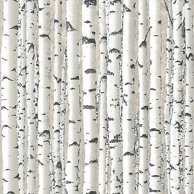 Tree Branches Wallpaper Rolls - Grey & White - 1279 Debona New Wood Silver Birch