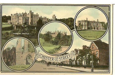 CHESTER LE STREET    MULTI VIEW inc HERMITAGE