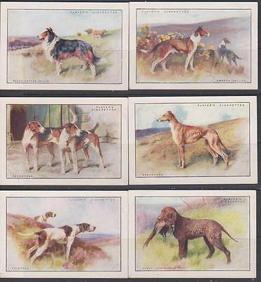 CIGARETTE CARDS Players 1924 Dogs