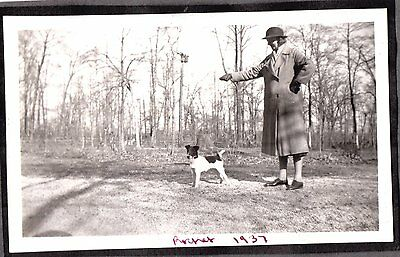 Vintage Photograph 1937 Smooth Fox Terrier Dog Puppy Massachusetts Old Photo