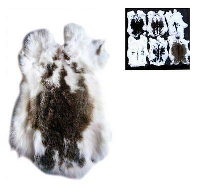 BUY 1 GET 1 FREE NATURAL SPOTTED GENUINE RABBIT SKIN hide fur pelt craft  bunny