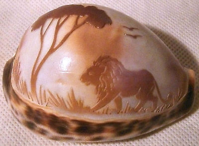 Lion and Savannah Scene Hand Carved into the Surface of a Tiger Cowrie Shell