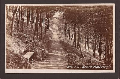 Scarborough. Olivers Mount, Secluded Pathway. RP.  1910.