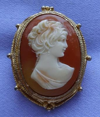 Vintage Classical Lady Lucite Cameo Brooch by HOLLYWOOD