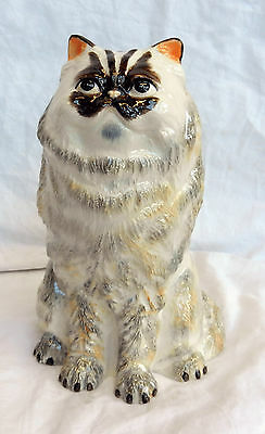 Large Ceramic Persian Cat Money Box - BNIB