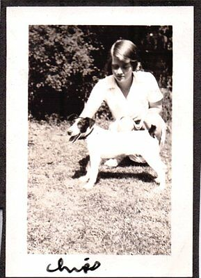 Vintage Photograph 1932 Smooth Fox Terrier Dog Puppy Massachusetts Old Photo