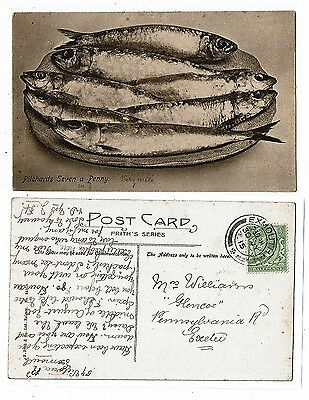 Cornish Post Card Early Printed Pilchards Seven A Penny