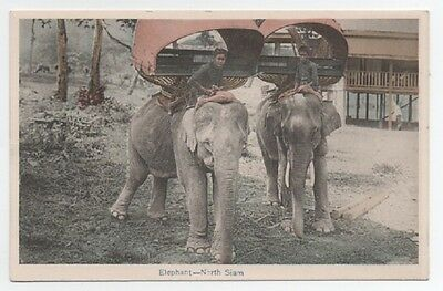 Vintage Postcard Traveling by Elephant North Siam Thailand