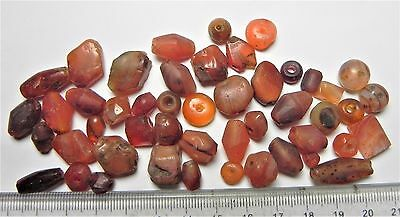 Zurqieh -Af1650- Ancient Egypt ,  Beautiful Lot Of 48 Carnelian Beads. 1400 B.c