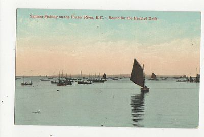 Salmon Fishing On The Fraser River Canada Vintage Postcard 0926